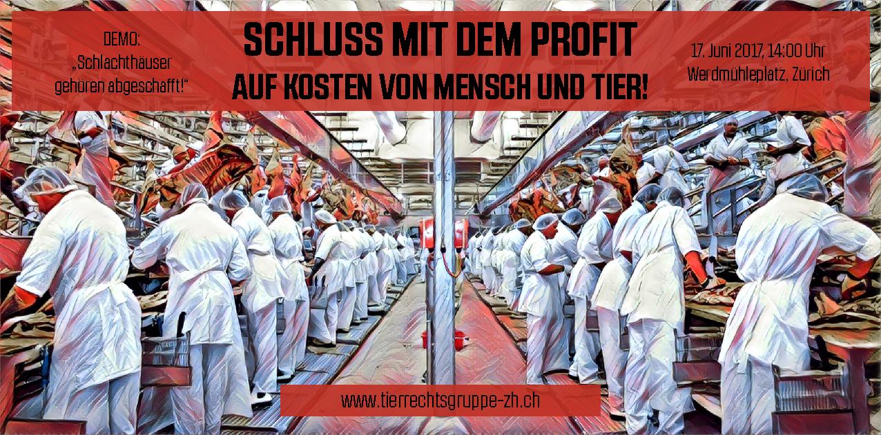 Schlachthof Schlachthaus Demo Zürich Juni 2017 Tierrechtsgruppe nachtwache