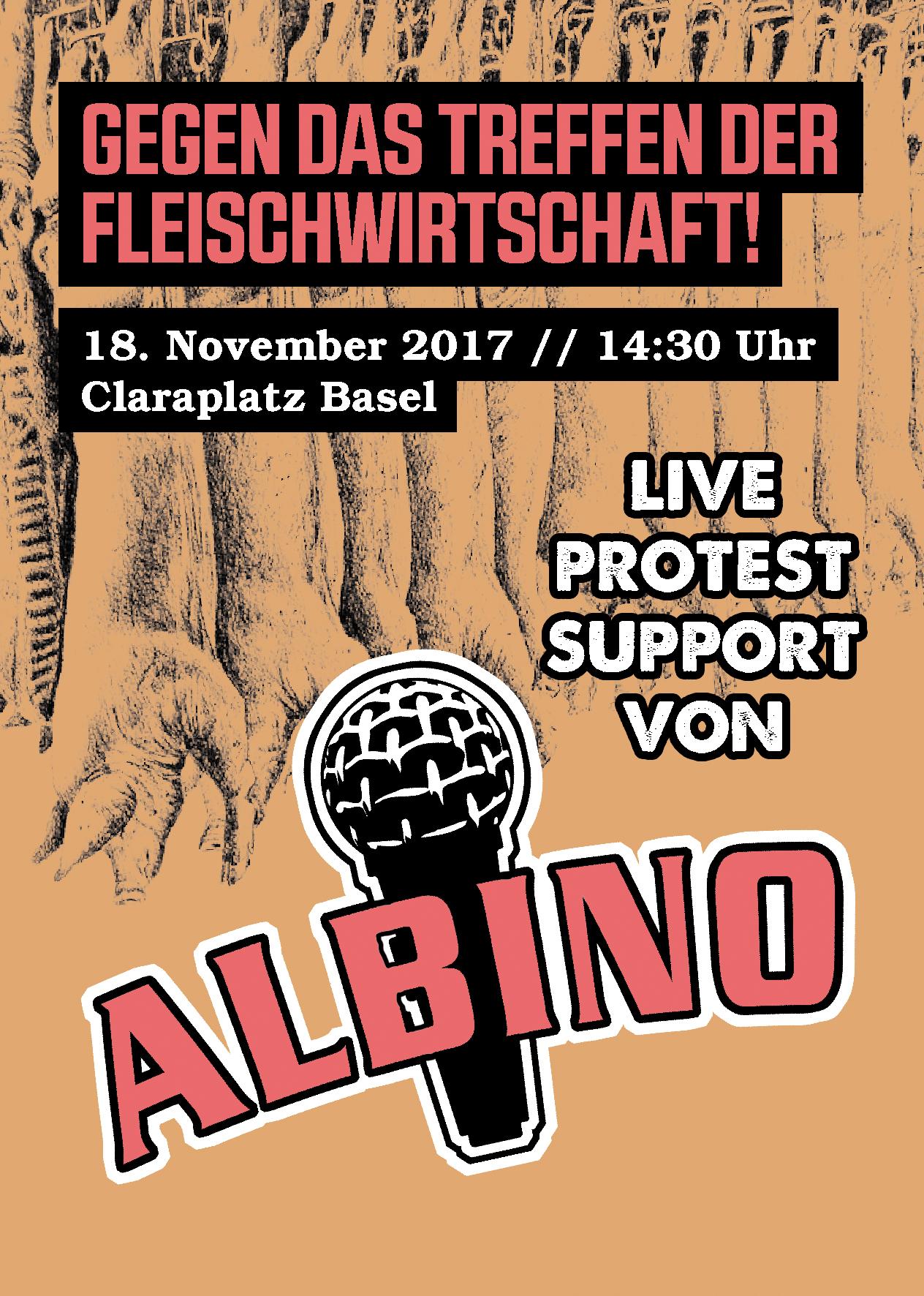 MC Albino Protest gegen Mefa 2017 Basel